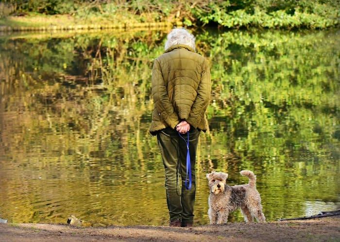 Ouderen huisdieren