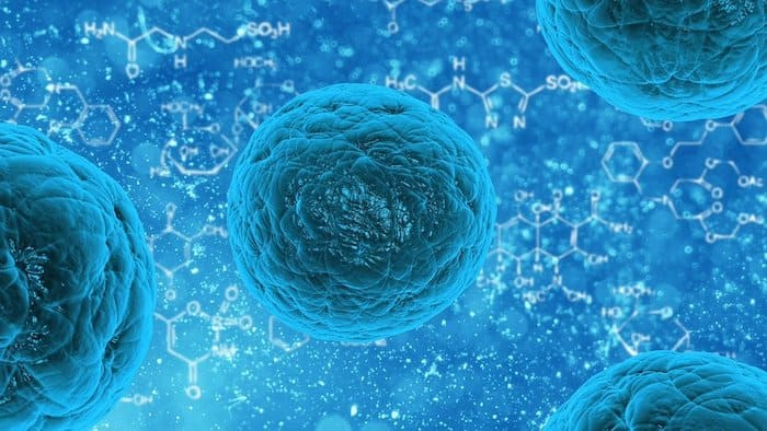 virussen inzetten tegen kanker