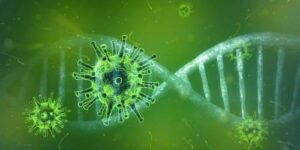 leefstijl, immuunsysteem, covid-19