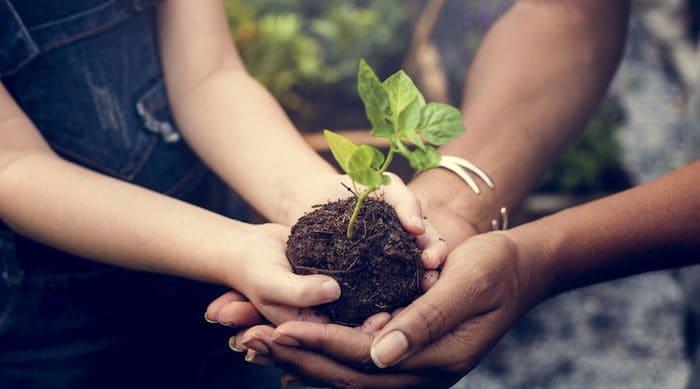 Moeder en kind planten samen een boom